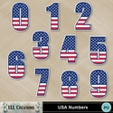 Usa_numbers-01_small