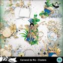 Patsscrap_carnaval_de_rio_pv_clusters_small