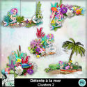 Louisel_detente_a_la_mer_clusters2_preview_small