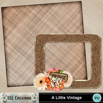 A_little_vintage-01