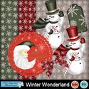 Winter_wonderland_small
