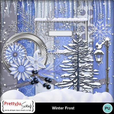 Winter_frost_1