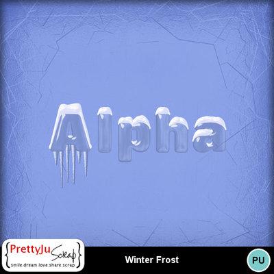 Winter_frost_3