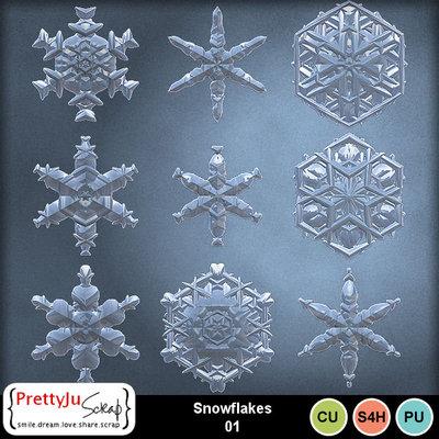 Snowflakes01_1