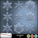 Snowflakes01_1_small