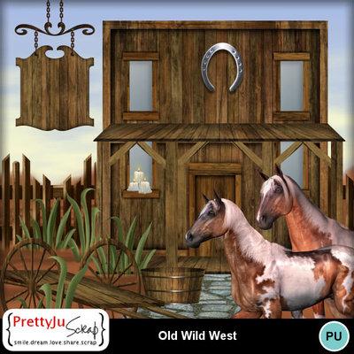 Wild_west_5