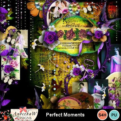 Perfect_moments-1