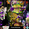 Perfect_moments-1_small