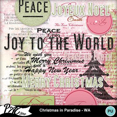 Patsscrap_christmas_in_paradise_pv_wa