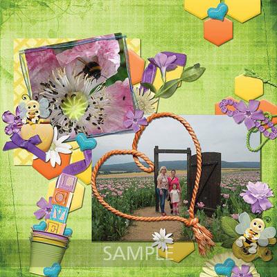 Scrapbookcrazy-creations-bee-my-honey-sarah-01