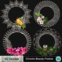 Chrome_beauty_frames-01_small