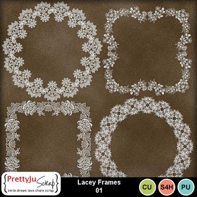 Cu_lace_frames01_1