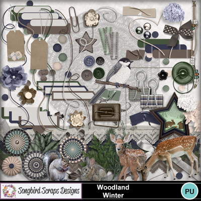 Woodland_winter_elements