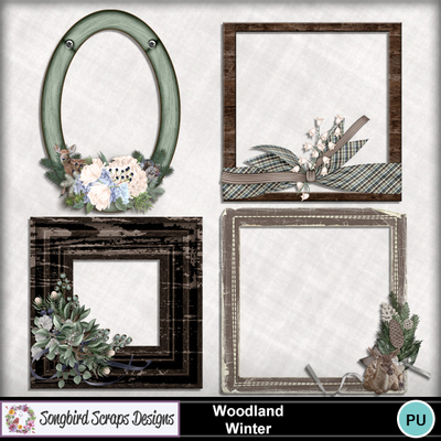 Woodland_winter_frames