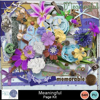 Pbs_meaningful_pkele