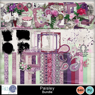 Pbs_paisley_bundle