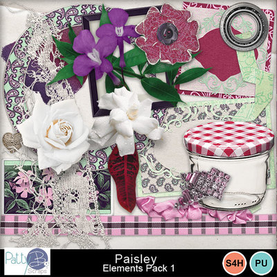 Pbs_paisley_elements1