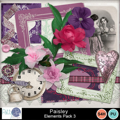 Pbs_paisley_elements3