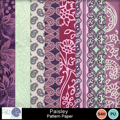 Pbs_paisley_pattern_ppr