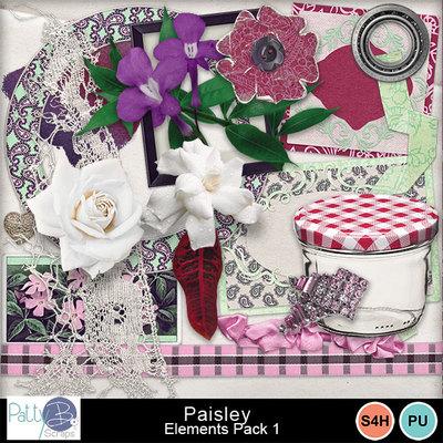 Pbs_paisley_elements1