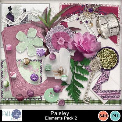 Pbs_paisley_elements2