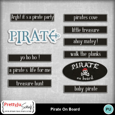Pirate_on_board_3