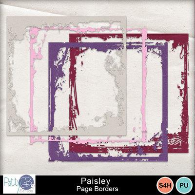 Pbs_paisley_page_borders