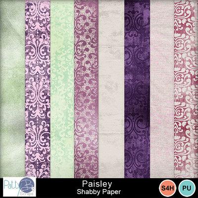 Pbs_paisley_shabby_ppr