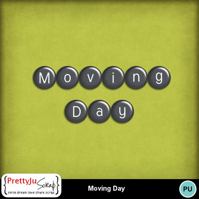Moving_day_4