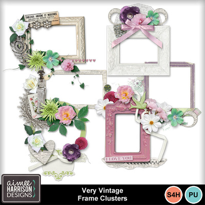 Aimeeh_veryvintage_frames