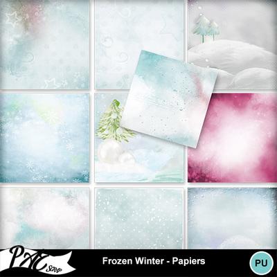 Patsscrap_frozen_winter_pv_papiers