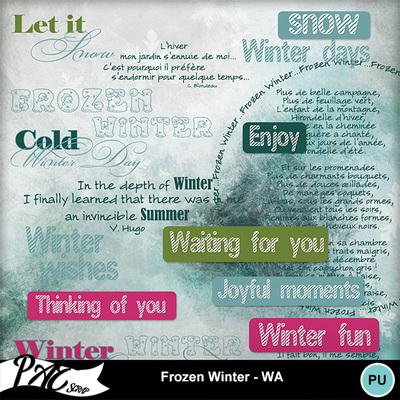 Patsscrap_frozen_winter_pv_wa