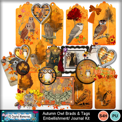 Autumn_owl_bard_tags