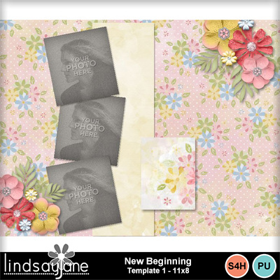 Newbeginning_template1_11x8-002