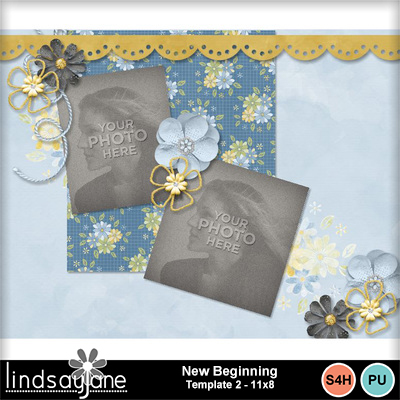 Newbeginning_template2_11x8-003