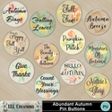 Abundant_autumn_pin_buttons-01_small
