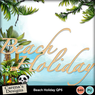 Beach-holiday-qp5