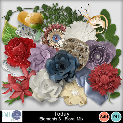 Pbs_today_elements3