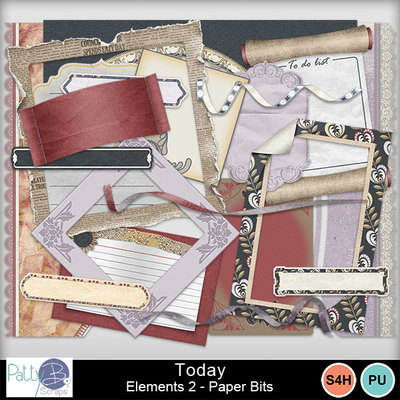 Pbs_today_elements2