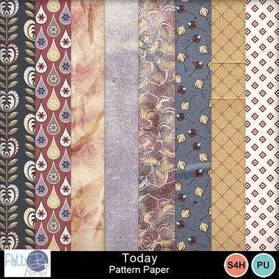 Pbs_today_pattern_ppr
