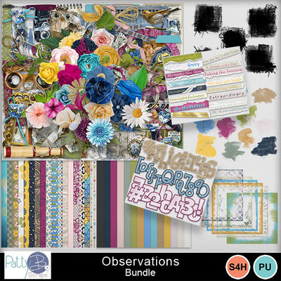 Pbs_observations_bundle