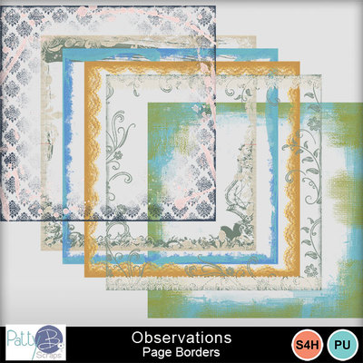 Pbs_observations_page_borders