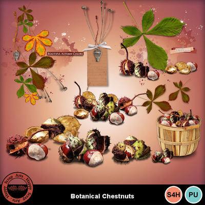 Botanicalchestnut__5_