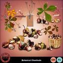 Botanicalchestnut__5__small