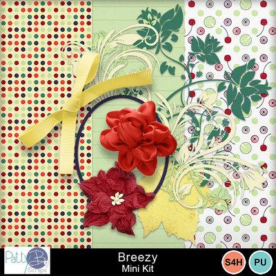 Pbs-breezy-mkall