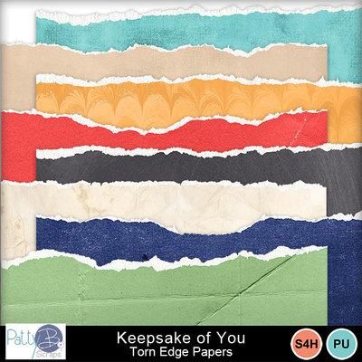 Pbs_keepsake_of_you_torn_edge_ppr