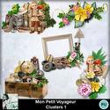 Louisel_mon_petit_voyageur_clusters1_preview_small
