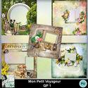 Louisel_mon_petit_voyageur_qp1_preview_small