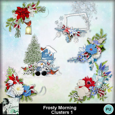 Louisel_frosty_morning_clusters1_preview
