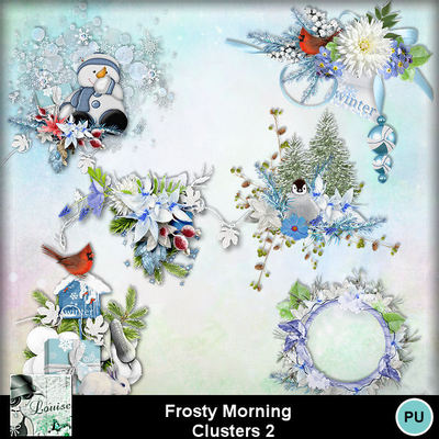 Louisel_frosty_morning_clusters2_preview